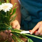 как сохранить срезанные цветы